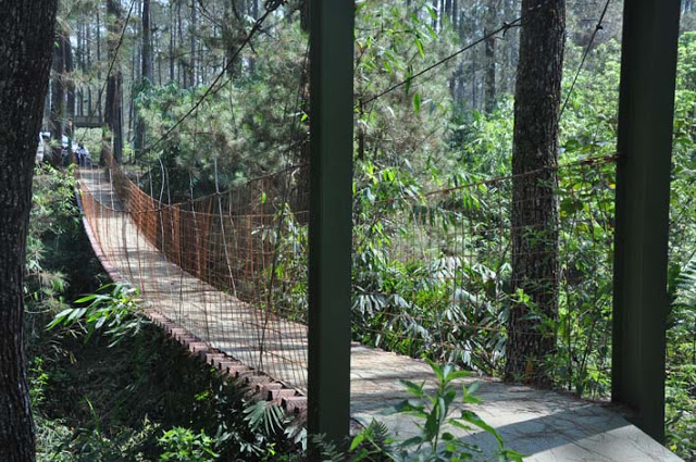 Zone 235 Cikole tempat Outbound Lembang Bandung - Rovers Adventure Indonesia
