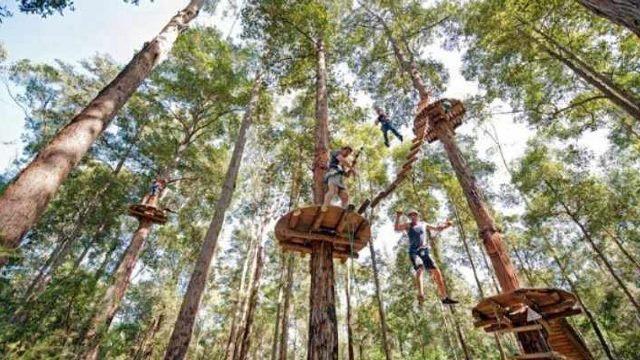 treetop adventure park bandung - Tempat Outbound murah di Bandung - Outbound Lembang Bandung