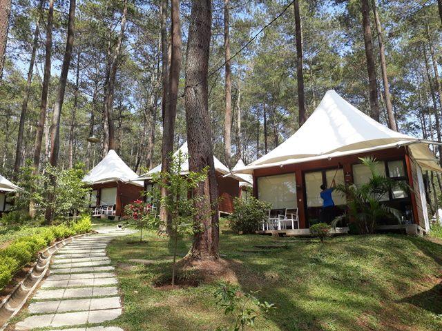 Paket Camping, Gathering, Outing Glamping Grafika Cikole Lembang | EO Bandung