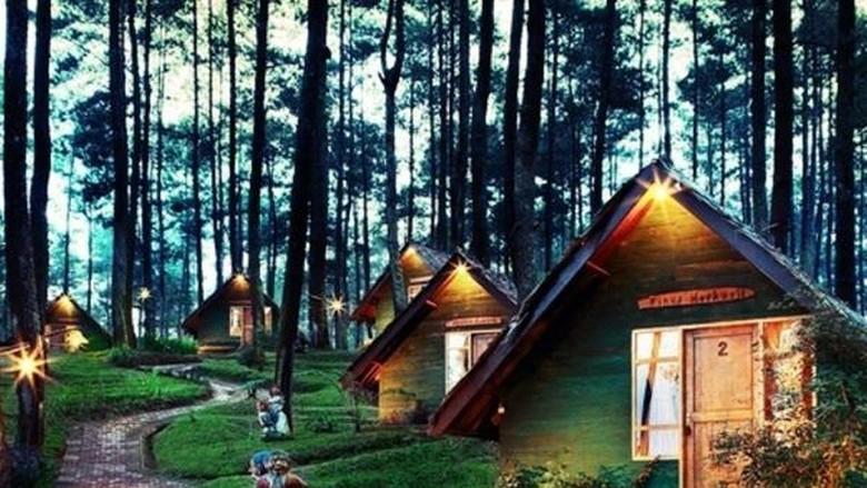 Penginapan - camping bungalow di Grafika Cikole Lembang