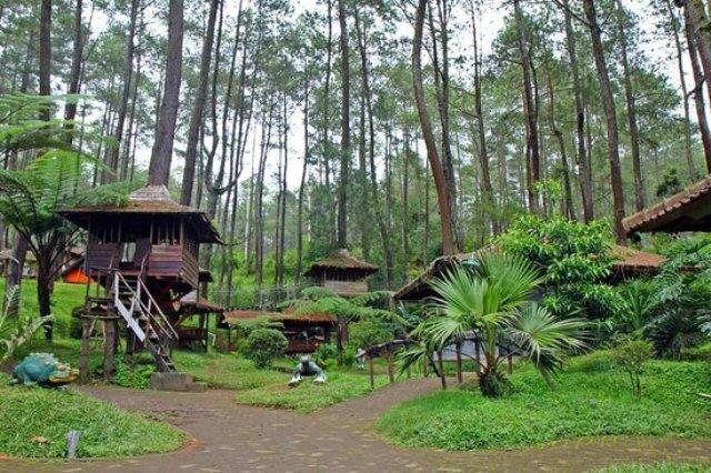 5 Tempat Wisata Outbound Di Bandung Terpopuler Provider Eo